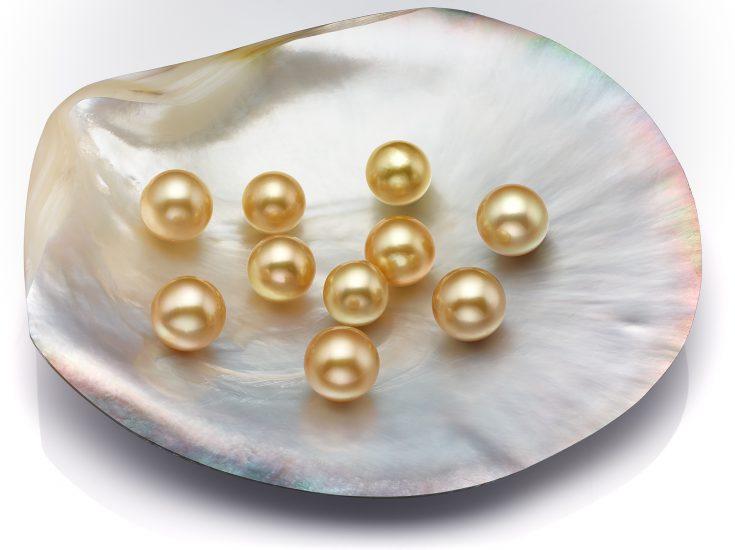 Lote de Perlas redondas Golden